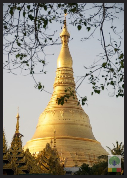 Capture the Colour YELLOW - Shwedagon Pagoda - Yangon - Myanmar (Burma)
