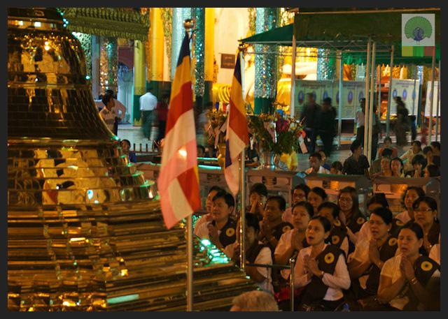 Shwedagon Pagoda by night - Worshippers - Yangon - Myanmar (Burma)