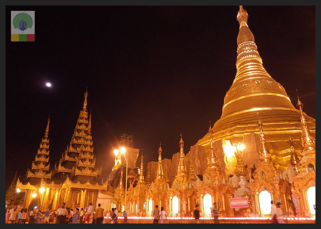 Shwedagon Pagoda by night - Yangon - Myanmar (Burma) 2