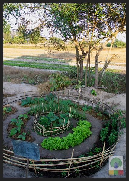 NEED Eco-village Foundation - Eco-farming school - Myanmar Travel Essentials 6