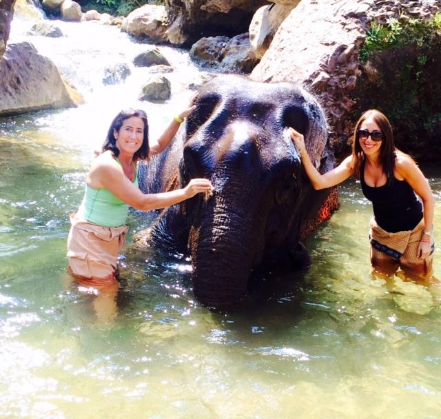 Green Valley Elephant Camp - Myanmar Travel Essentials 3