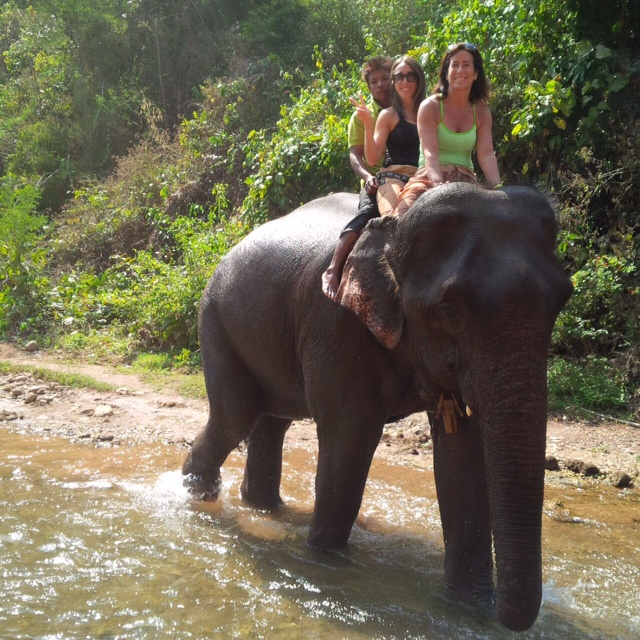Green Valley Elephant Camp - Myanmar Travel Essentials 2