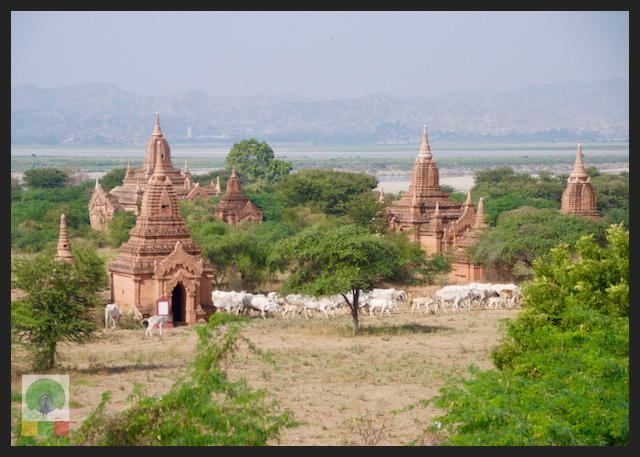 Perfect Family Trip - Temples of Bagan - Myanmar Travel Essentials