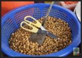 Street Snack Tour - Gangster Snack 2 - Myanmar Travel Essentials