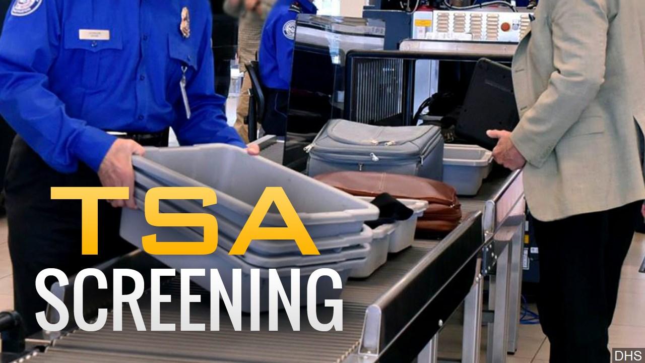 TSA_1547495344951.jfif.jpg