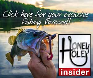 HONEY-HOLE-INSIDER-300x250-exclusive-forecast_1550181098298.jpg