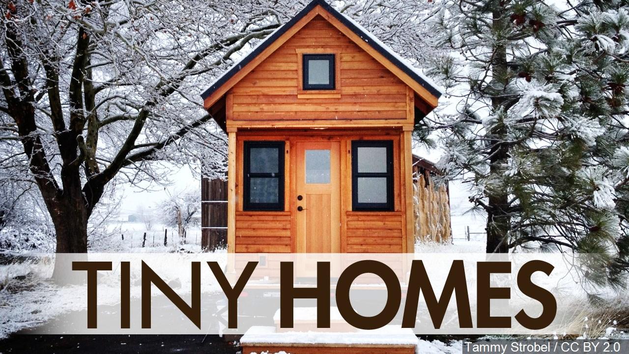 Tiny Homes_1555465103563.jpg.jpg