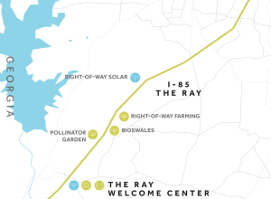 The Ray