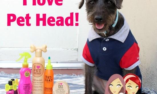 Pet Head Review