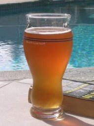 Wipeout IPA by the pool