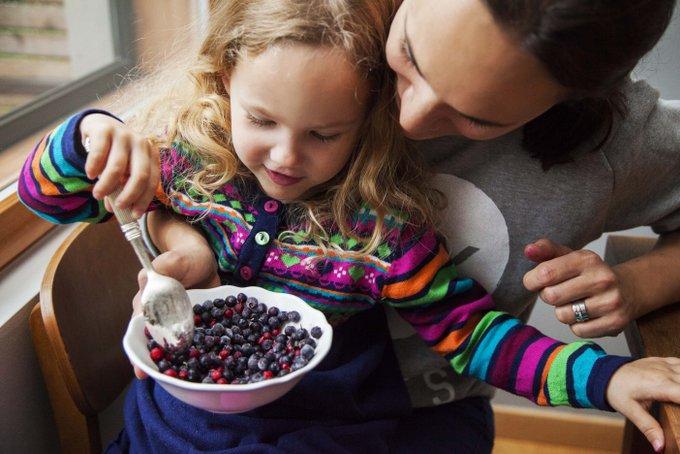 Myberryforest.com Vegan, glutenfree