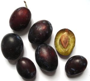 german prunes
