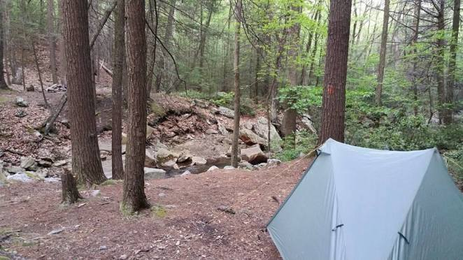 Home for the night. I love camping by creeks. They sing me to sleep.