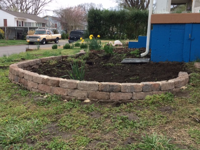 Building a Rose Garden – Part 2