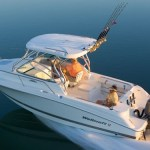 What you Should Know Before Hiring or Buying a Boat