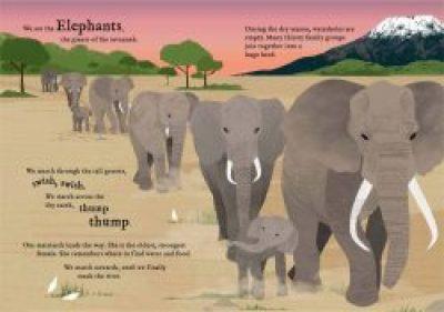wetravelsofar-elephants