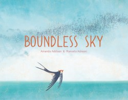 BoundlessSky