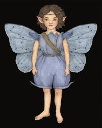 ANaturalHistoryofFairies-HollyBlueFairy