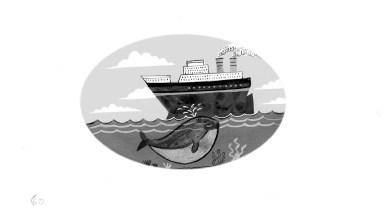 Tindims-seawhale