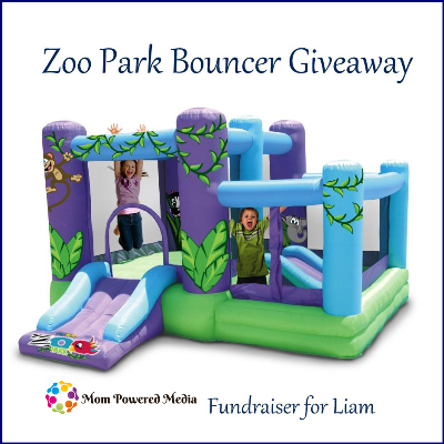 Zoo Park Bouncer