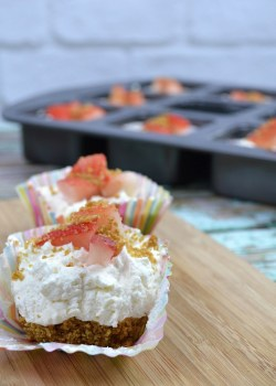 No Bake Mini Cheesecakes Recipe using the Nutri Ninja Nutri Bowl Duo