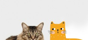 Lighten Up Your Space with a Cat Mural