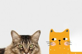 Lighten Up Your Space with a Cat Mural | MyBoysen