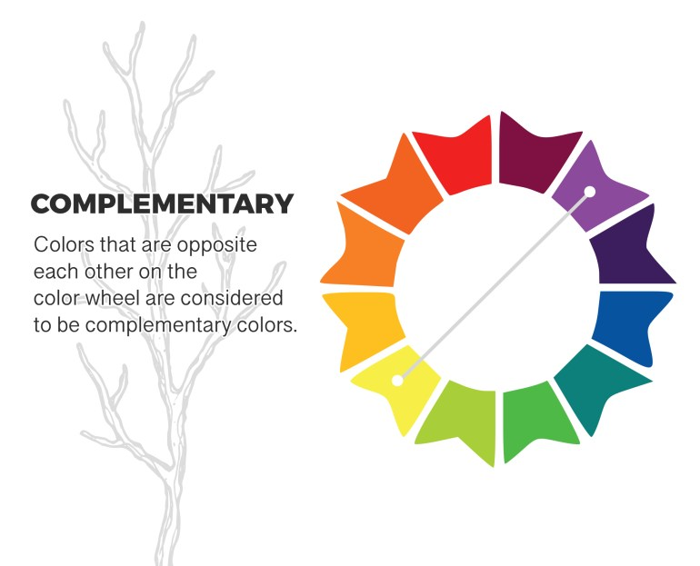 More Paint Color Schemes for You To Choose From | MyBoysen