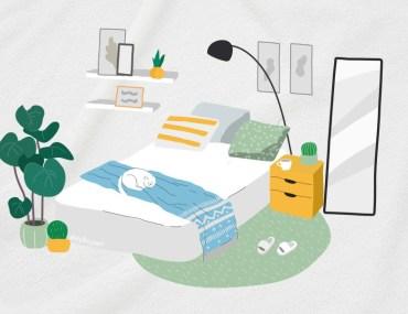 Bedroom Color Ideas: Creating Safe Spaces for Sleep | MyBoysen
