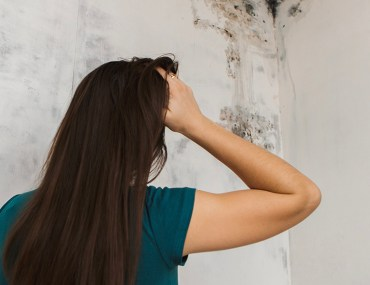 How to Get Rid of Mold at Home | MyBoysen