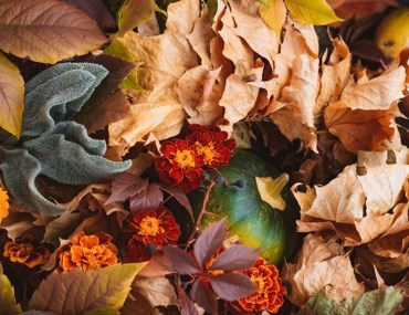Gorgeous Fall Colors You Can Have For Your Home | MyBoysen