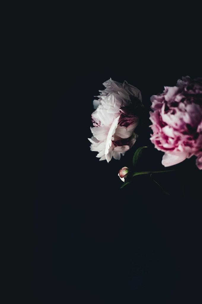Blumen Vertrauensängste Blogpost