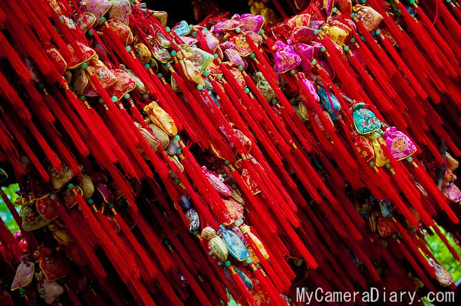 Chengdu.2011.blog-0031