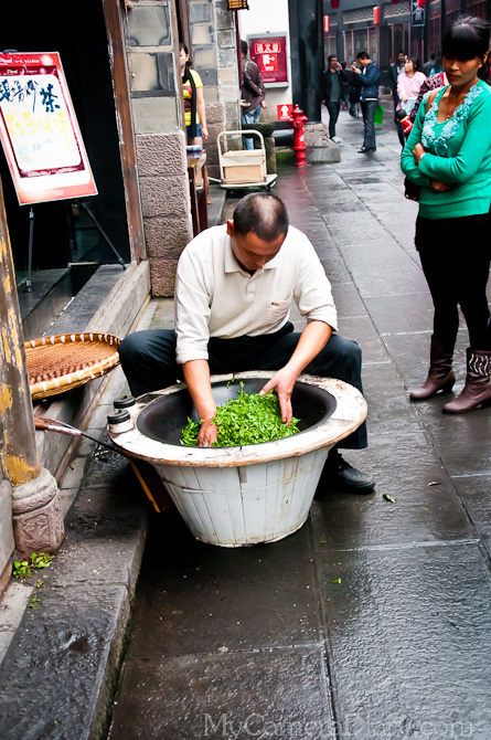 Chengdu, China, Jinli, Sichuan, Szechuan, Photography, Travel, Adventure, Diary, Story