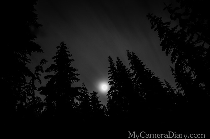 Seattle Photo    Darkness Upon