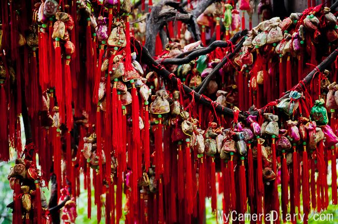 Chengdu.2011.blog-0028