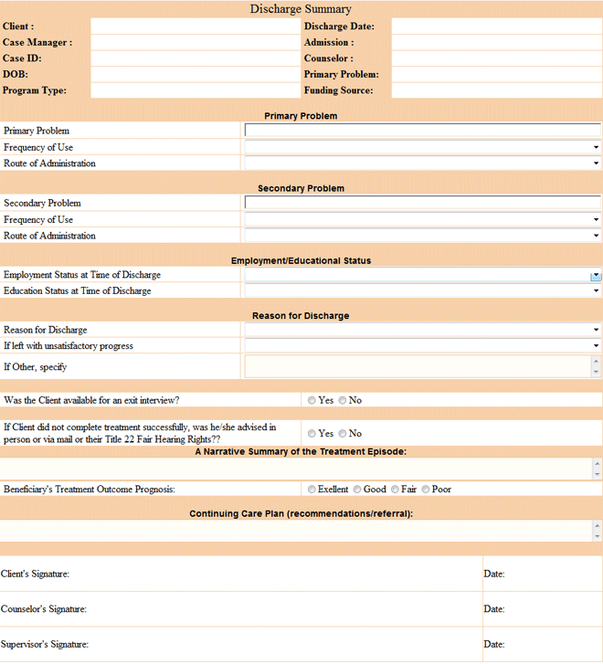 Discharge Form Template hospitalist job description hospital – Audit Summary Template