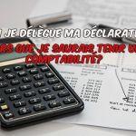 Pourquoi déléguer la déclaration fiscale de sa location meublée, locataire saisonnière ?