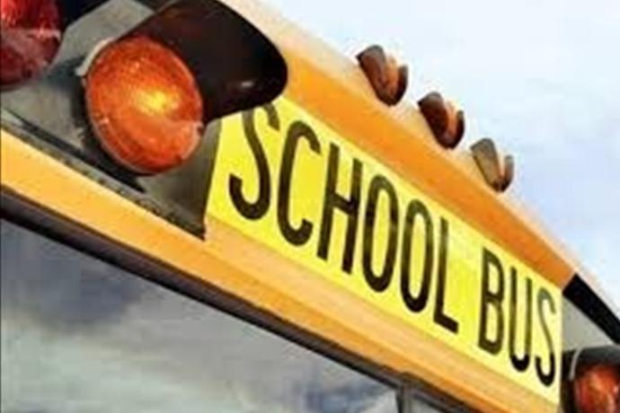 School Bus_-7753200341648785408