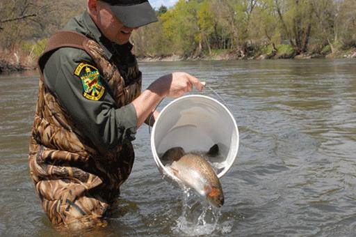 Courtesy - Vermont Fish and Wildlife