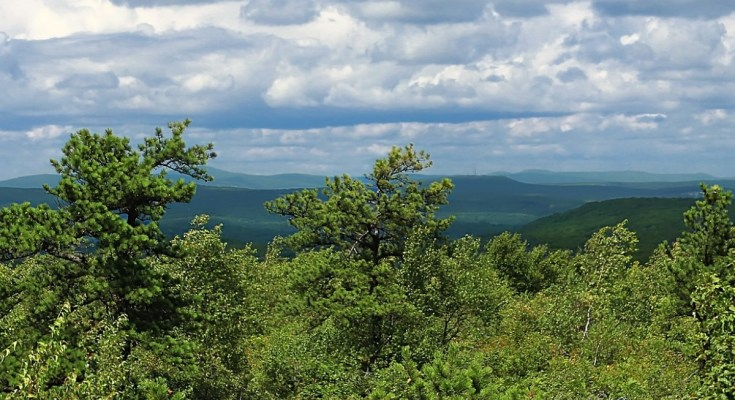 Pinchot State Forest