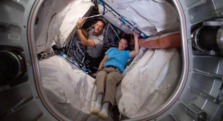 Expedition 65 Flight Engineers