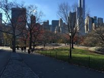 A picture I took while on a run in Central Park, New York