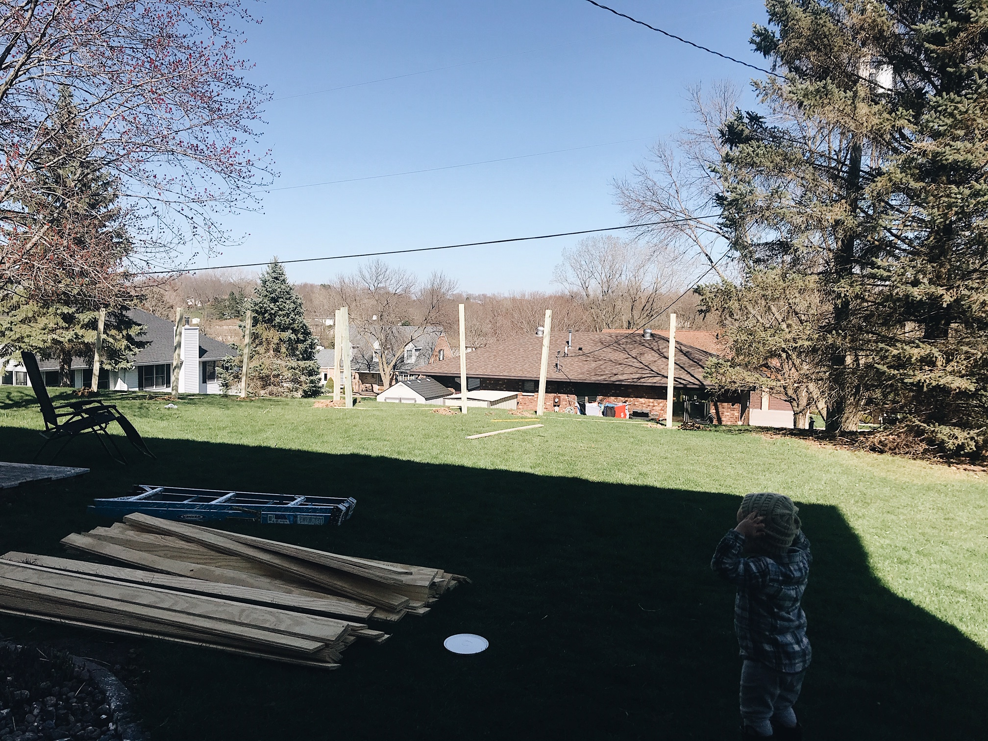backyard landscaping before
