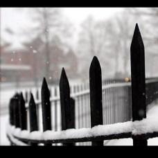 Slideshow_snow5