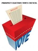 Election-Icon-2013