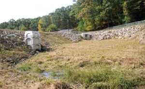 The borough has taken the title to this dam and a pond on Warren Avenue. –LUKE MARSHALL