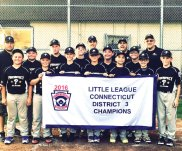 The Prospect Little League All-Stars won the District 3 championship July 15, beating Shelton, 16-6, in the final. Pictured from left: front row, Jack Lawlor, Tyler Giambra, D.J. Mulligan, Cory Mastropietro, Hunter Simpson, Jordan Jones, Drew Shea; back row, manager Bill Giambra, Nick Sasso, Jay D'Angelo, John Walsh, Mike Bunce, Zach Drewry, coach Jeremy Montini, Ryan Montini, and coach Dave Jones. –CONTRIBUTED