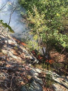 A brush fire burns Friday afternoon in woods off of Hockanum Glen Road in Beacon Falls. –BEACON HOSE