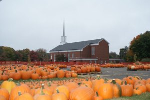The Pumpkin Patch at St. Anthony Church in Prospect opens Saturday. –CONTRIBUTED
